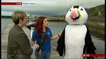 BBC Breakfast meets puffins on Rathlin