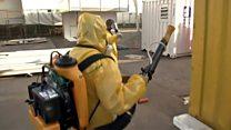 """2.000 millones """"en riesgo de contraer zika en África y Asia"""""""