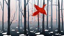 BBC NOW 2016-17 Season: Firebird