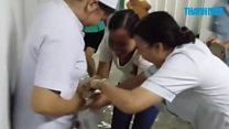 Eels swim through flooded Vietnam hospital