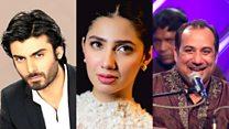 Bollywood producer criticises Pakistani ban