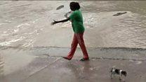 La mujer que ahuyentó a un cocodrilo de 4 metros con un solo golpe de chancleta