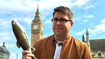#Londonблог: самые странные английские законы