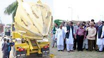 لاہور میں درختوں کے تحفظ کی کوشش