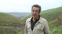 Do we want 'wet deserts' or 'rewilding' of rural areas?