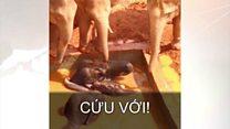 Giải cứu voi ở Trung Quốc