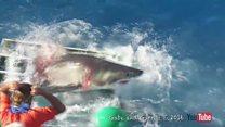 Büyük beyaz köpek balığı ile dalgıç kafeste sıkıştı