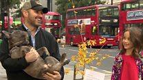 Dad 'risks arrest' to plant Oxford St tree