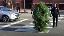 'Tree' arrested for blocking traffic