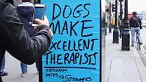 लंदन में दिखते संदेशों वाले पोस्टर