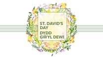 BBC NOW 2016-17 Season: St David's Day