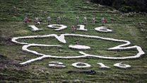 Giant Poppy carved into hillside