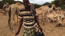 Janga la ukame kaskazini mashariki Kenya