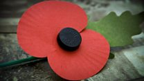 How the poppy tradition began