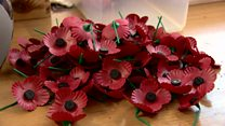 Subtle differences in Remembrance poppies