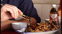 BBC記者、ミャンマー名物ハチのから揚げを試食