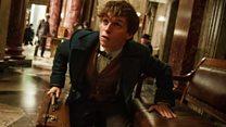 Sihir 'Fantastic Beasts...' kalahkan 'Doctor Strange' di puncak box office