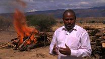 Mlipuko wa ugonjwa wa kimeta wadhibitiwa Tanzania