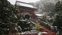 Tokyo snow arrives 40 days early