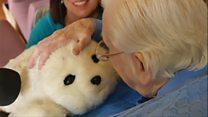 Робот-тюлень у будинку для літніх людей