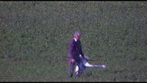 RSPCA video of swans being abused