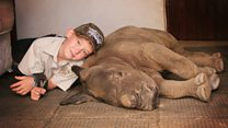 How a 9-year-old saved a rhino