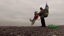 Man and dog clean beaches of litter