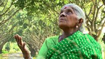 Sonsuzluq qınağına ağac əkməklə qalib gələn 105 yaşlı qadın