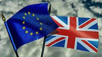 Brexit: A 'bespoke' deal for Britain