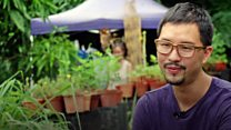 Urban farming takes root in Singapore