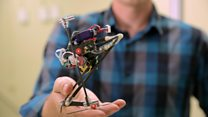 Jumping robot inspired by bush babies