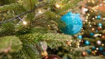 Сотня рождественских елок в одном доме