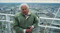 Sir David Attenborough's epic sign off