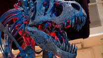 We might soon know what happened to dinosaurs