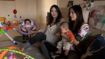 视频:台湾的同性婚姻能合法化吗?