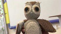 Owlbert the owl returns after six months
