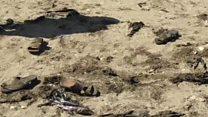انتحاري يقتل  48 جنديا في مدينة عدن جنوبي اليمن