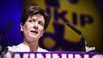 Diane James: Why I quit as UKIP leader after 18 days