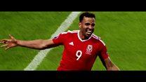 Euro 2016: Cewri Coleman