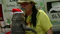 'I love my alligator like family'