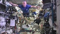 Astronauts 'freeze' for Mannequin Challenge