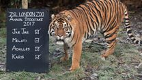 Zoo counts its animals one-by-one
