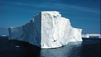 Giant iceberg breaks away: penguins hitch a ride