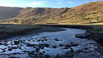 Beck restored to help salmon breed