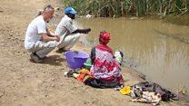 Prawns fight parasitic disease