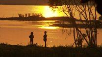 एमेज़ॉन के जंगलों में कई बांध बनाने की योजना