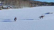 استفاده از اسب برای حل مشکل اسکی در زمینهای صاف