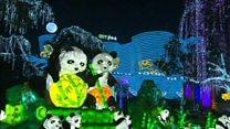 أضواء وأنوار تشع في كافة أنحاء الصين