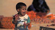 الصحراء الغربية...لاجئون نسيهم العالم