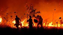 La devastación de los incendios forestales en Constitución y otros pueblos de Chile que luchan contra las llamas